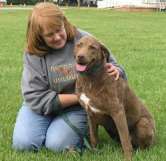 Dog Kennel Shrewsbury Pa
